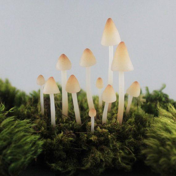 Terrarium Figurines Realistic Translucent Mushroom Terrarium