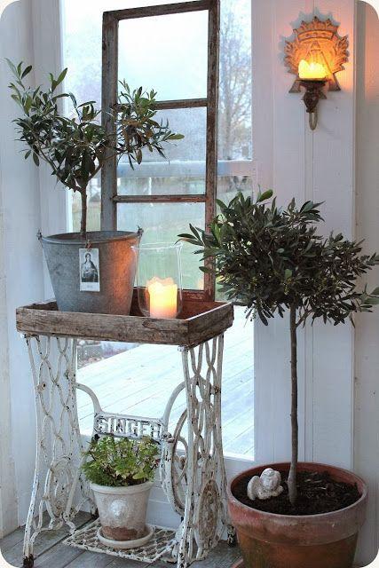 Plantes vertes   accessories   Pinterest   Máquinas de coser, Coser ...