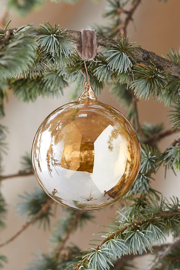 Sheer Glass Globe Ornament   Globe ornament, Glass globe ...