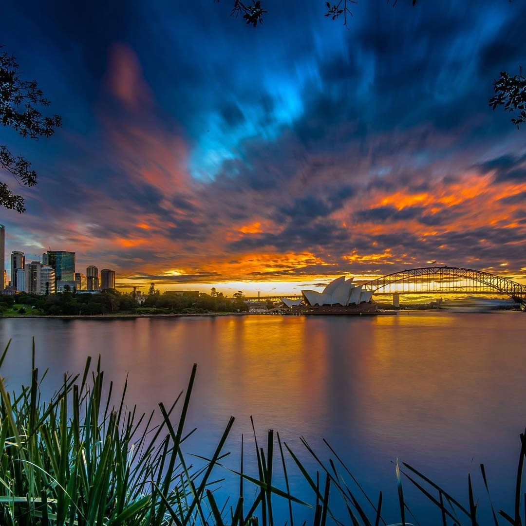 """Prepare for an evening with the best of Sydney... courtesy of Dunleavey Photography at Mrs Macquarie's Chair. Our Fan Photo of the Week. ‪#‎ilovesydney‬"""