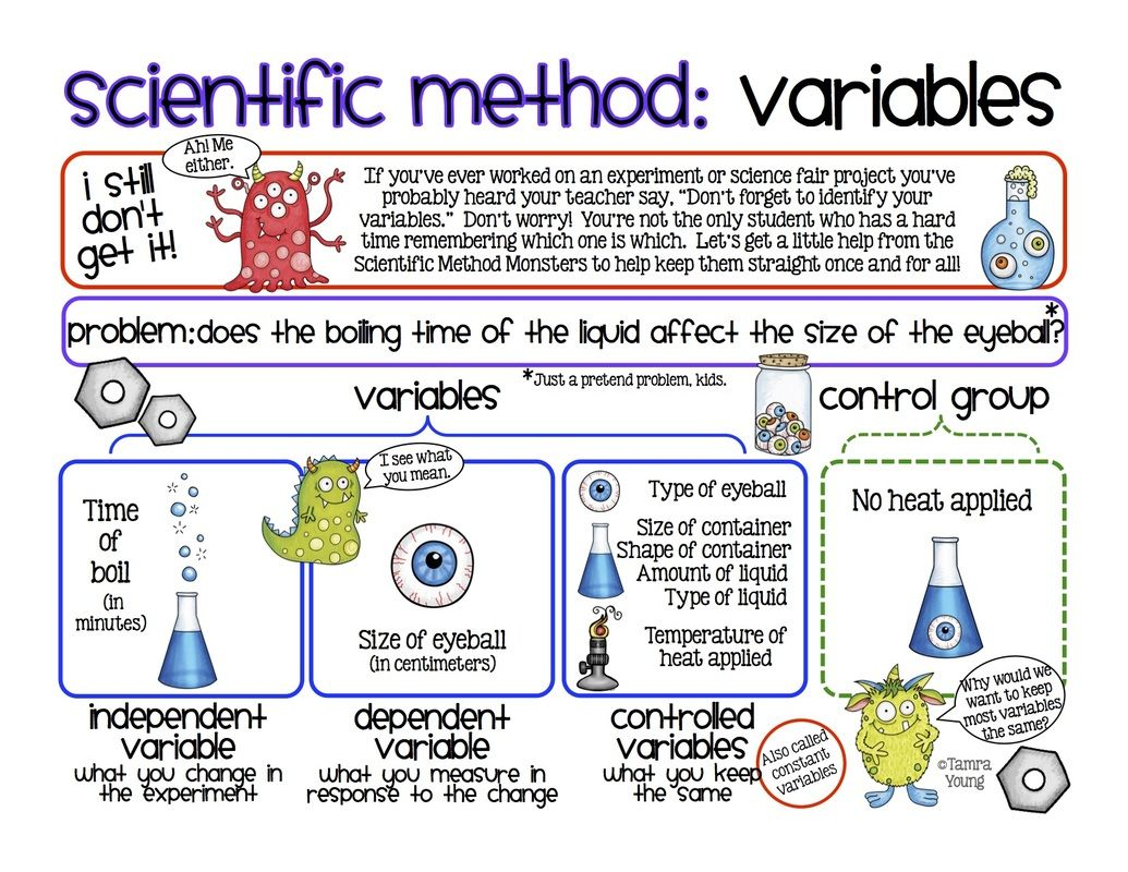 Image Result For Scientific Method Choice Board