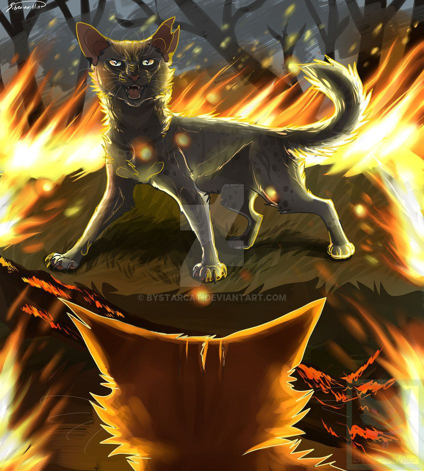 We'll be on fire by byStarCat on DeviantArt Warrior cats
