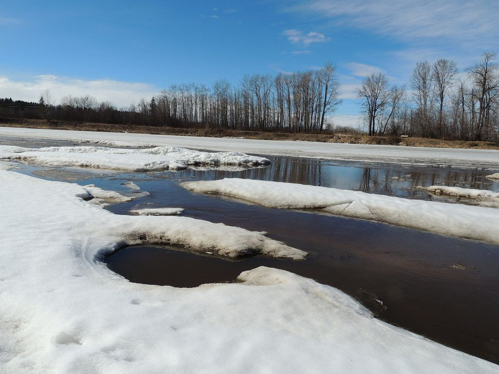 kevinmklerks posted a photo:  Ice flows on the Red Deer River, in the north section of the park.