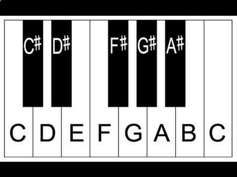 Piano Lessons for Beginners Lesson 1 How to Play Piano Tutorial Easy ...