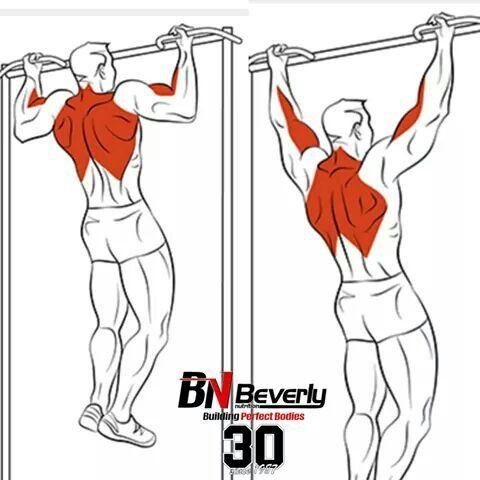 Back Exercises Ejercicios de Espalda | workout | Pinterest ...