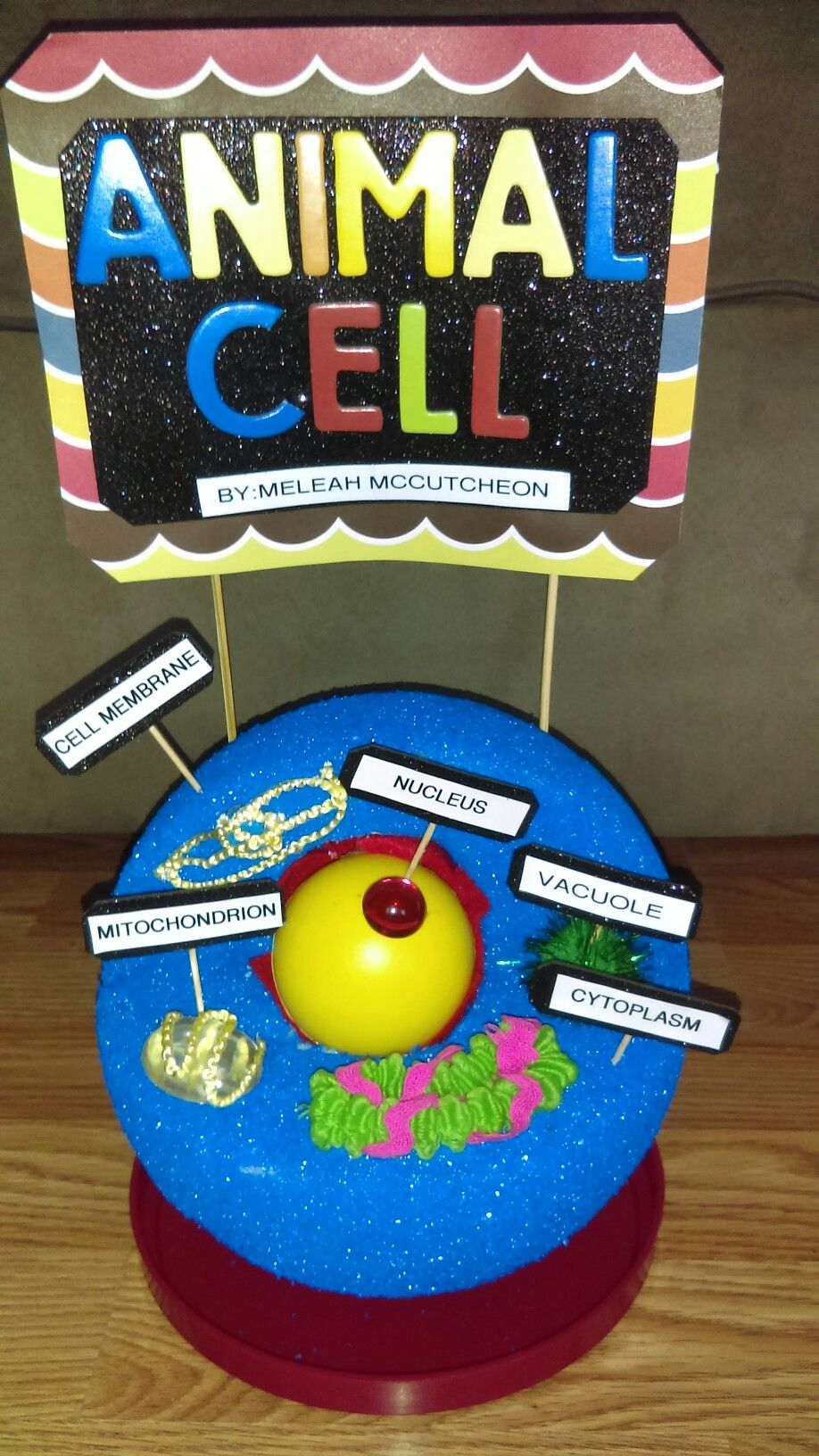 Animal Cell With Th Grade Project