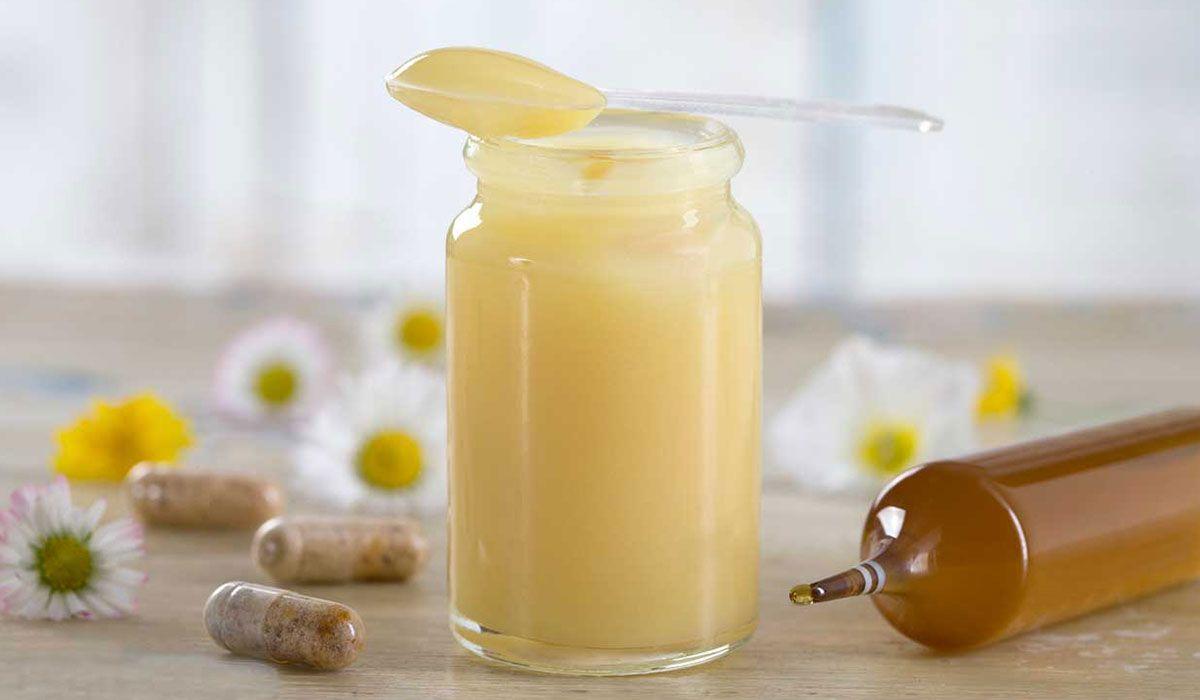غذاء ملكات النحل نظرة عامة على الفوائد والأضرار Royal Jelly Benefits Royal Jelly Honey Benefits