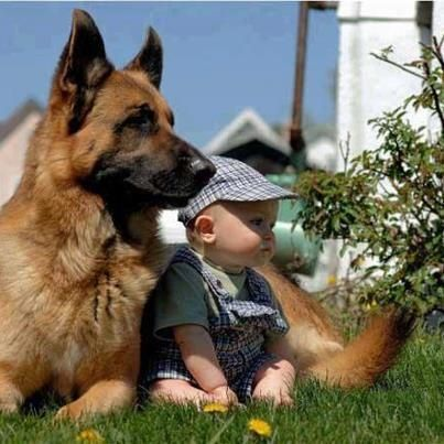 Beautiful The Protector Love Moments