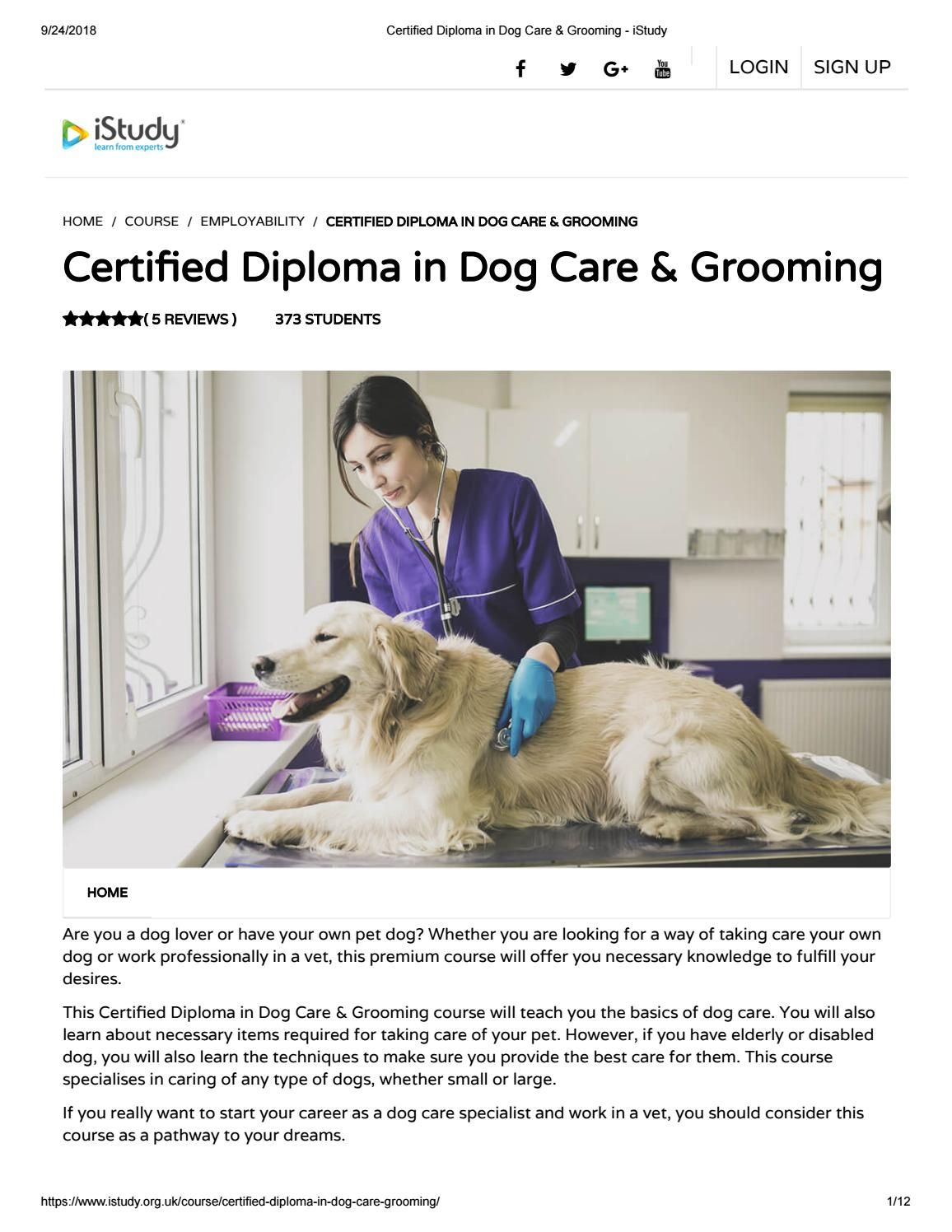 Certified Diploma In Dog Care Grooming Istudy Dog Care Dogs Your Dog