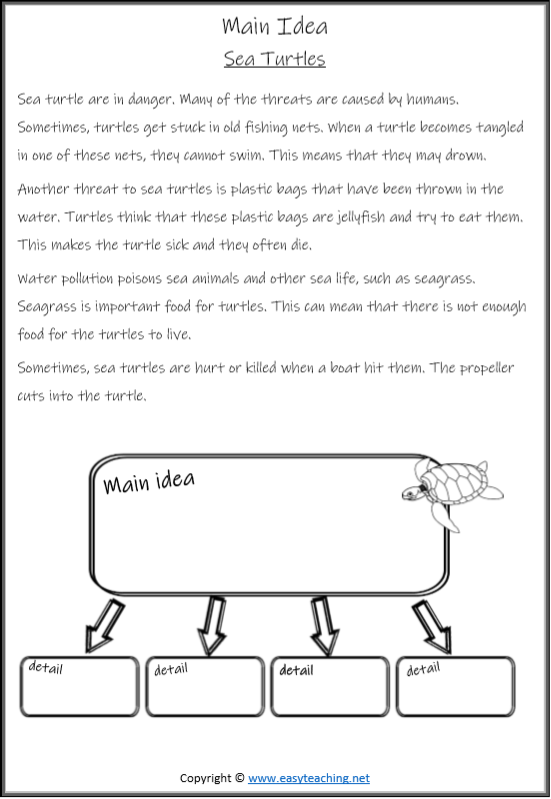 Read The Text About Sea Turtles Then Work Out The Main Idea And Supporting Details Summarizing Worksheet Main Idea Worksheet Reading Main Idea