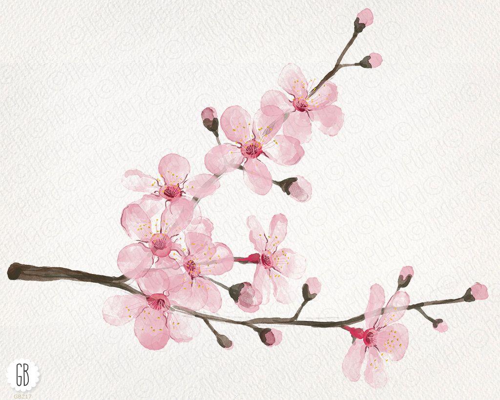 Watercolor Cherry Blossom Cherry Tree Sakura Hand Painted