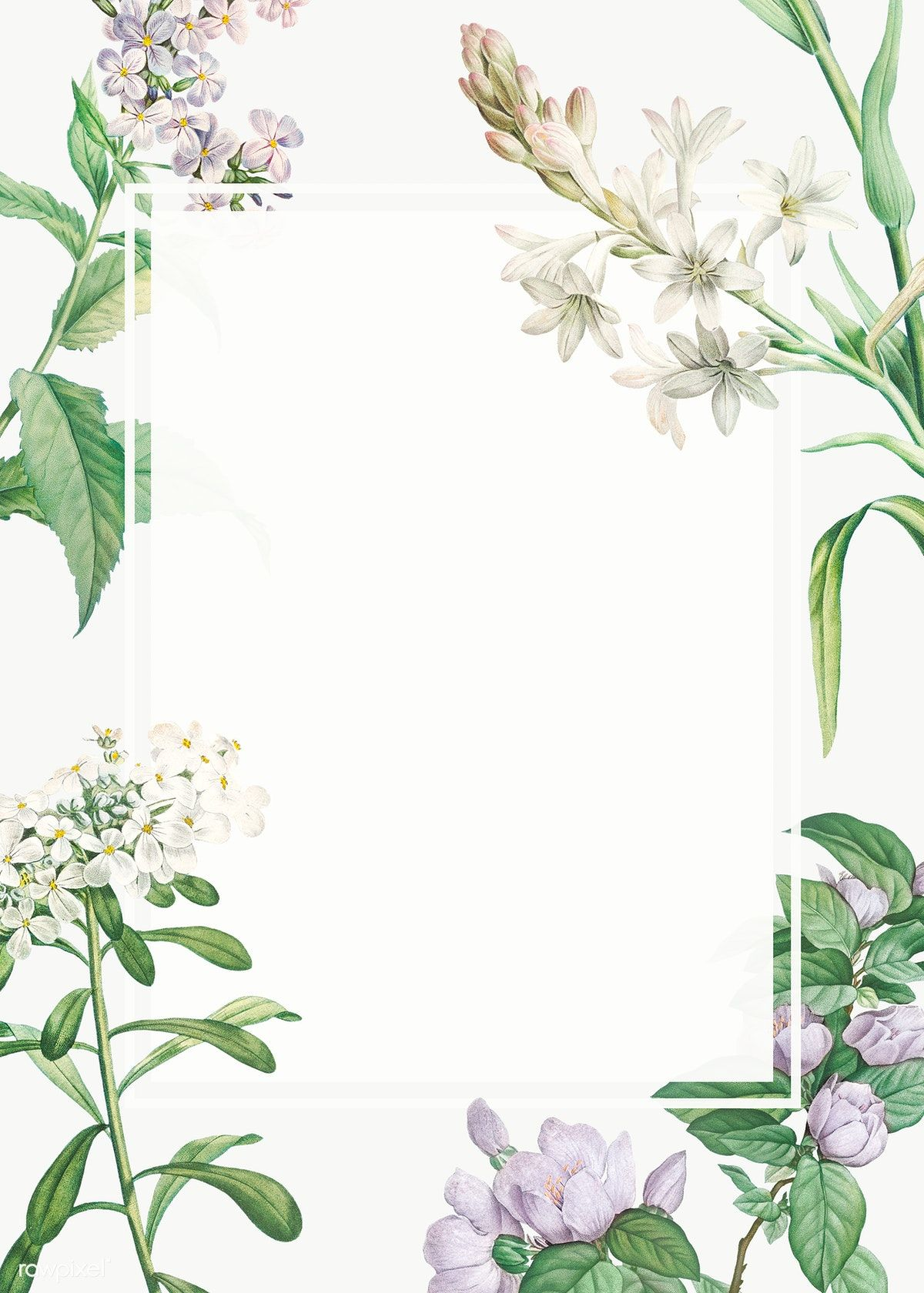 Vintage Blank Various Flowers Themed Frame Transparent Png Free Image By Rawpixel Com Photo Frame Wallpaper Gold Wallpaper Background Pink Background Images