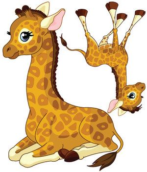 Stickers B B Girafe Gar On Vente Stickers Animaux De La Jungle Pour Enfants Decore Ta