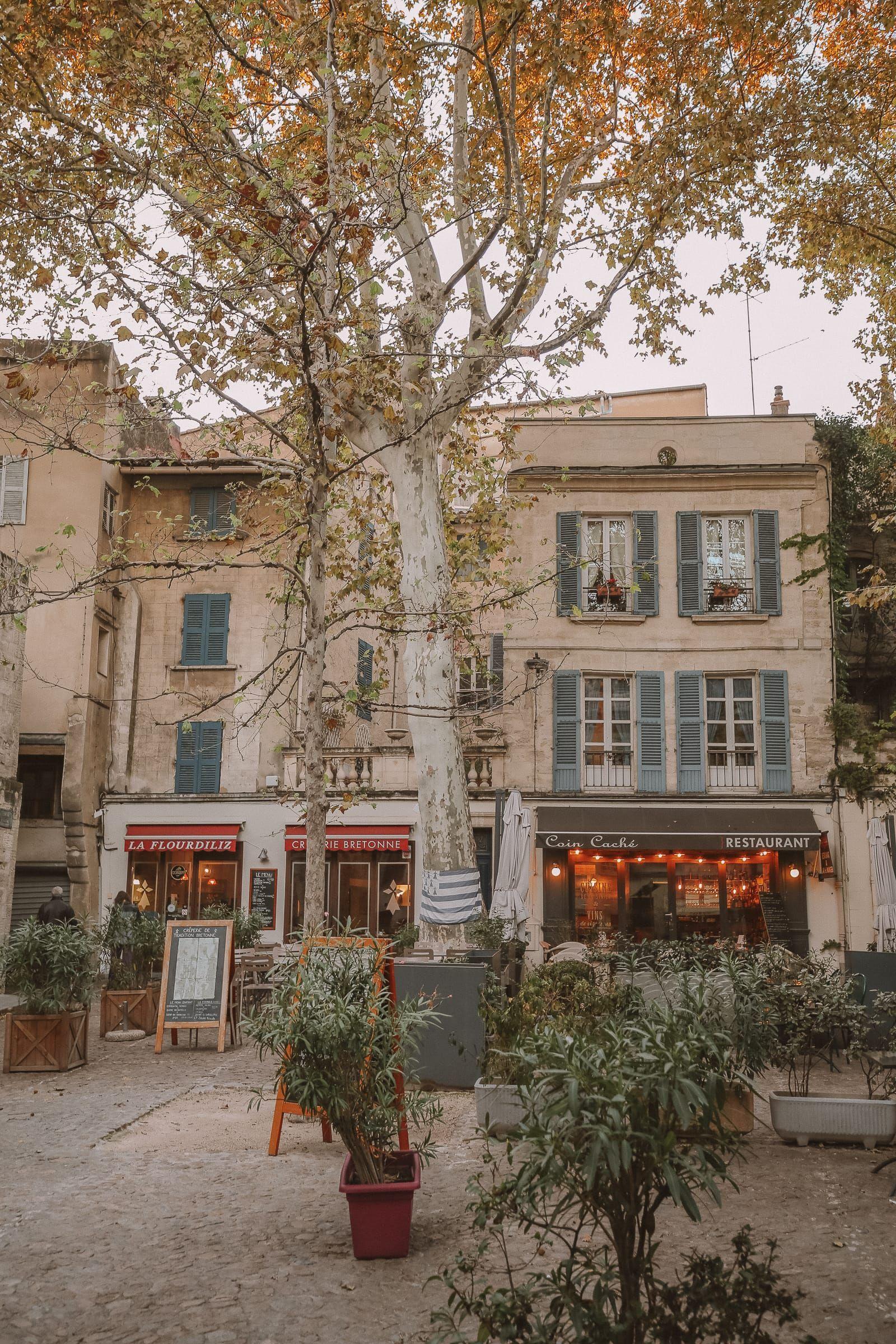 24 Hours Visiting Avignon Provence Provence Provence France