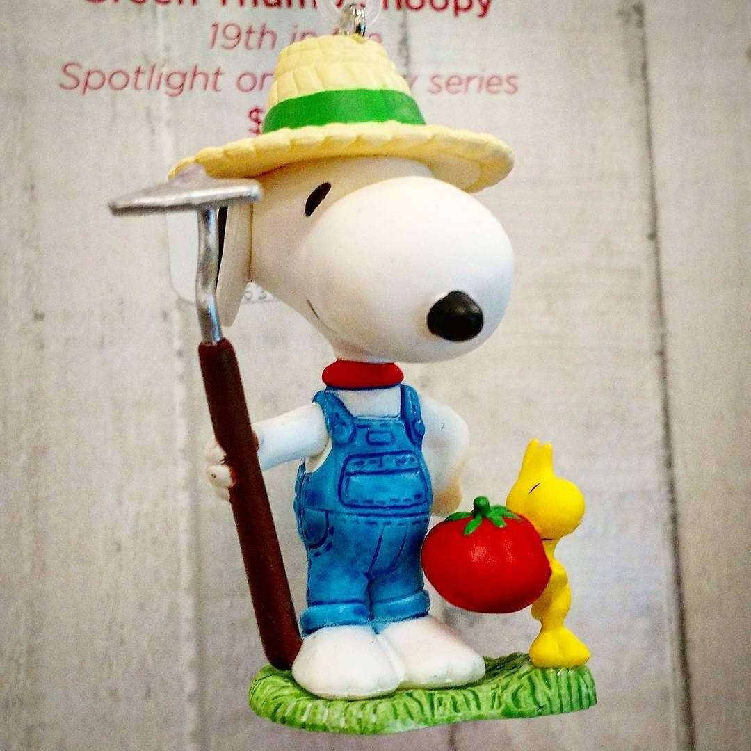 CollectPeanuts.com on Instagram - Down to earth! #Snoopy ...