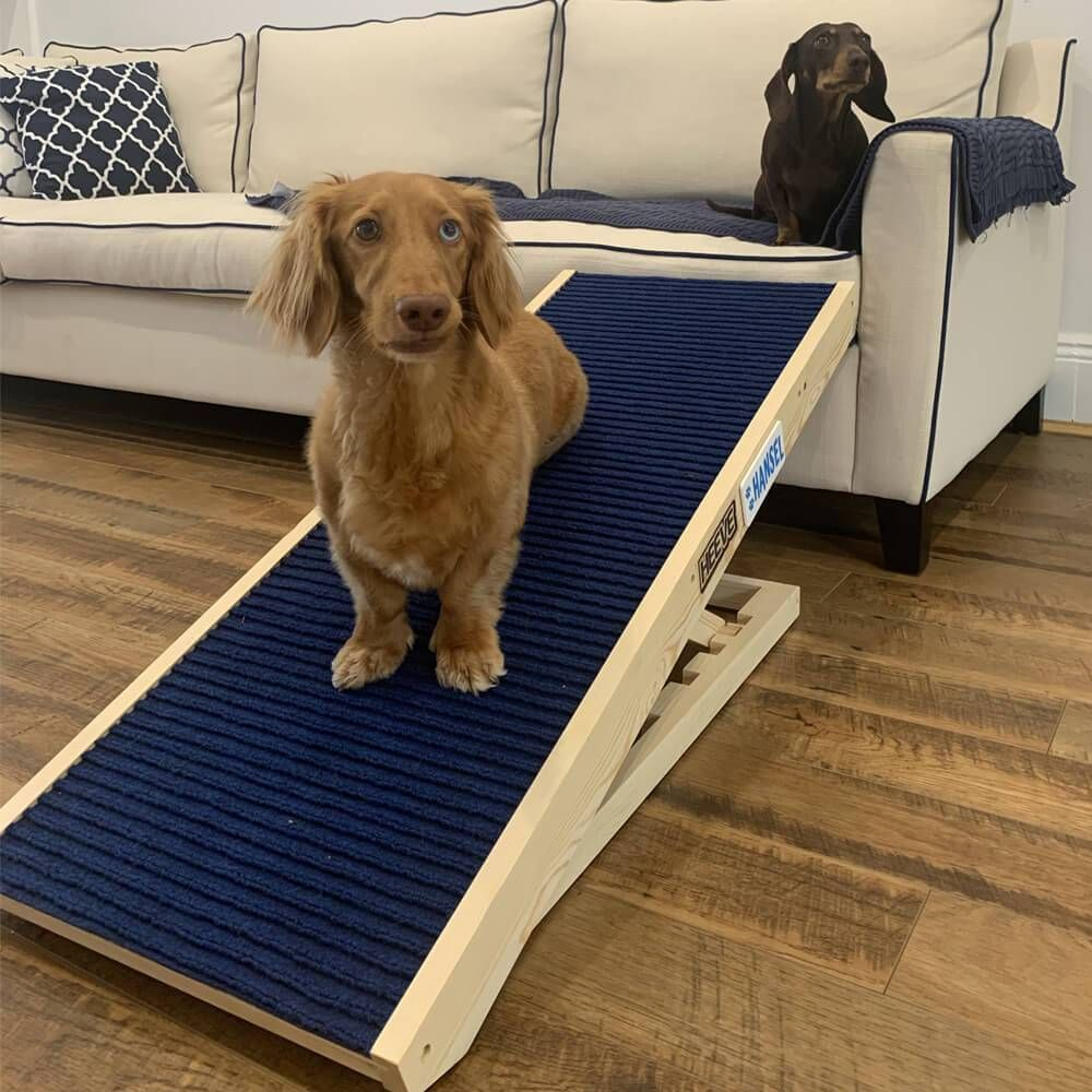 Heeve Up Ya Get Wooden Dog Ramp For Beds Charcoal Open Box In 2020 Dog Ramp For Bed Dog Ramp Dogs