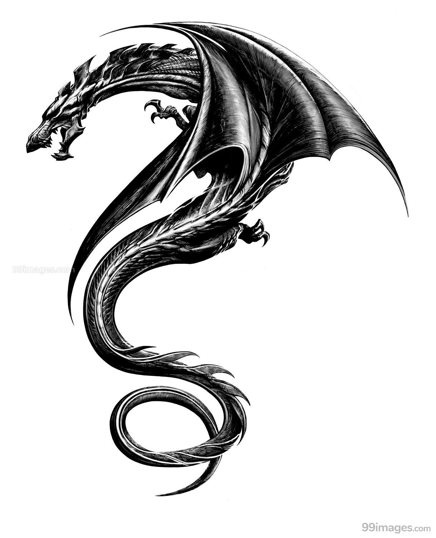 Creative Dragon Tattoos Hd Photos 10832 Dragontattoos Tattoos Dragon Tattoo Dragon Tattoo Designs Tribal Dragon Tattoos