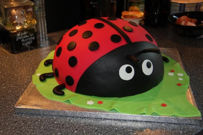 Marienkafer Torte 94549569 Torten Und So Gebackenes Pinterest