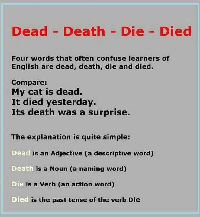 dead death die died english language esl efl learn  essay for ba english democracy is a very popular term today it is usually associated the united states form of government by people