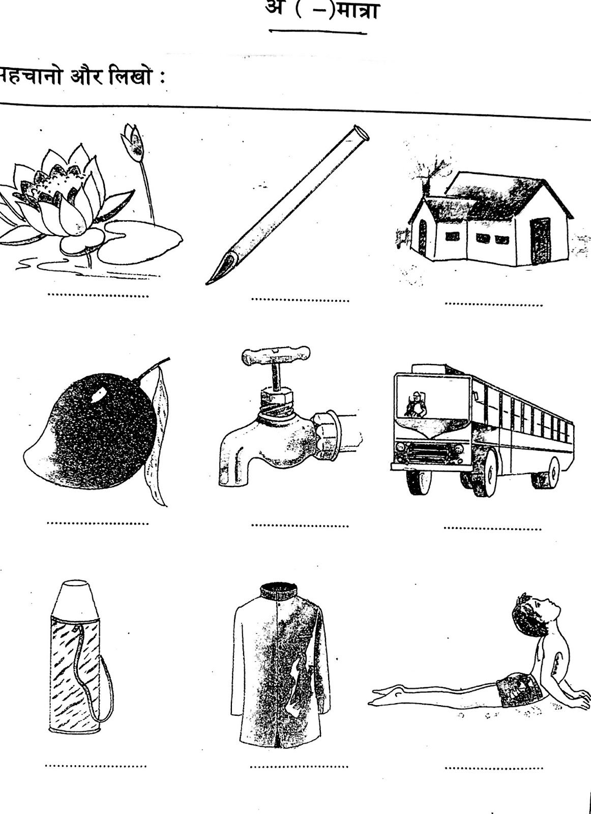 Page 14 With Images