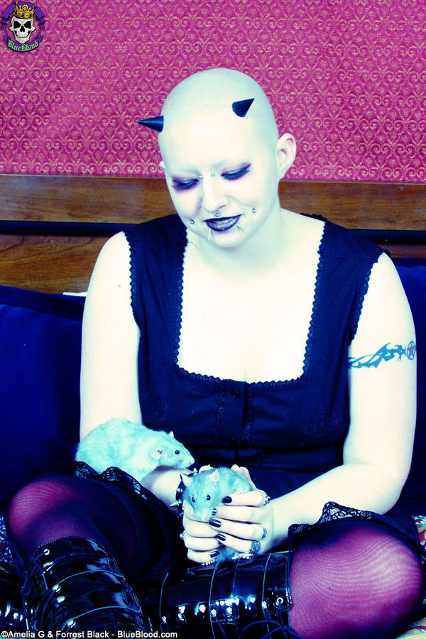 Luci with pet rats for blue blood for Blue blood tattoo