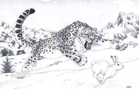 Go Back Gallery For Snow Leopard Coloring Pages Abstract