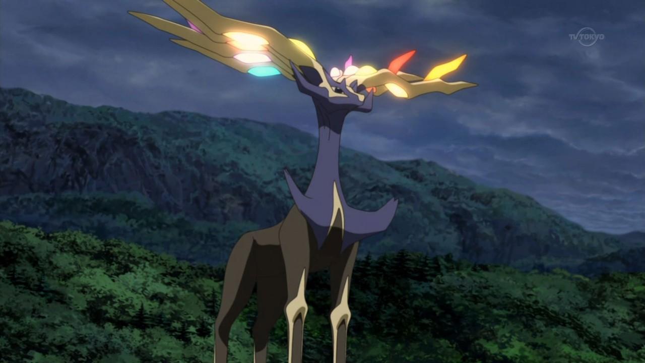 Pokemon Anime Xerneas Pokemon Pictures Pokemon Anime