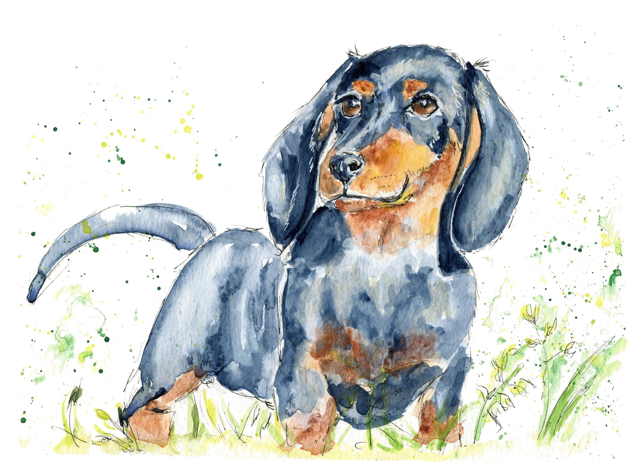 Dachshund Sausage Dog Art Print Sausage Dog Gifts Watercolour Painting For Dog Lovers Nikki Moksha Designs In 2020 Dog Print Art Dog Watercolor Painting Watercolor Dog