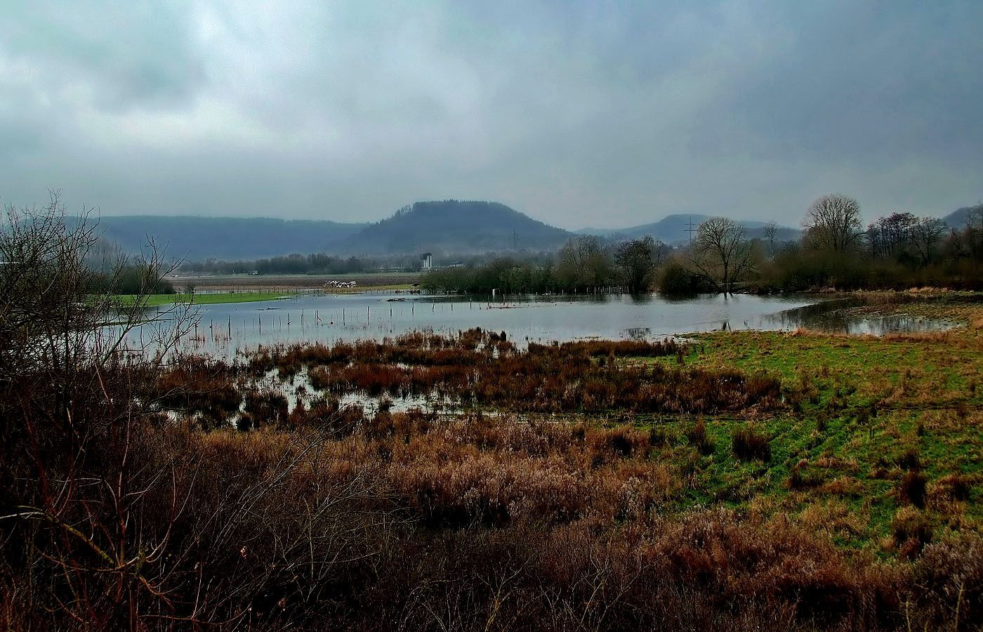 """""""Feuchtgebiete"""" gibt es viele, ... auch in der Natur, wenn jetzt noch mehr Regen fiele, Seenplatte pur.  :-)  Auch zwischen Beckingen und Dillingen."""