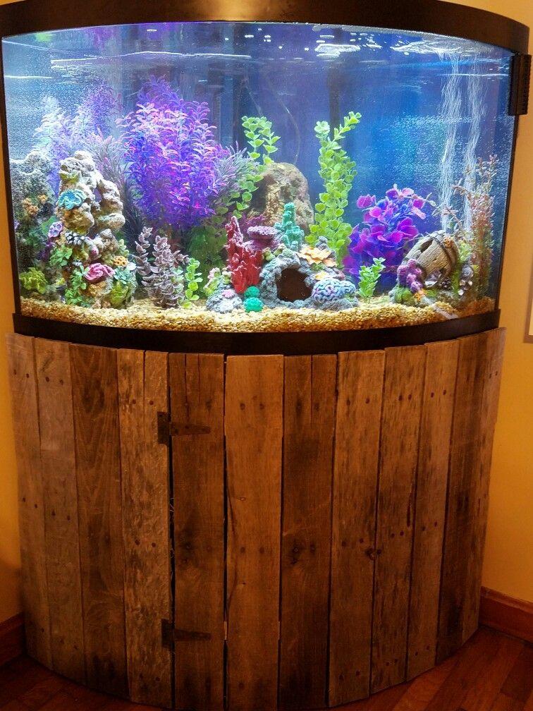 Aquarium Corner Front Bow