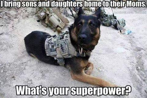 I bring sons and daughters home to their Moms. What's your superpower? Love military dogs