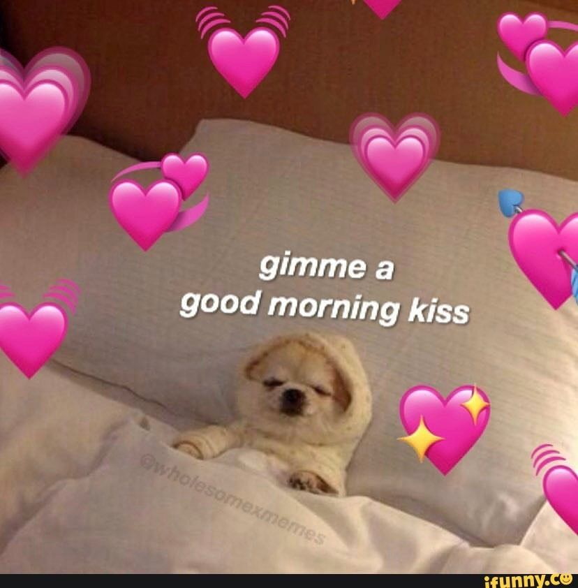 Gimme A N Good Morning Kiss Ifunny In 2021 Cute Love Memes Cute Memes Wholesome Memes