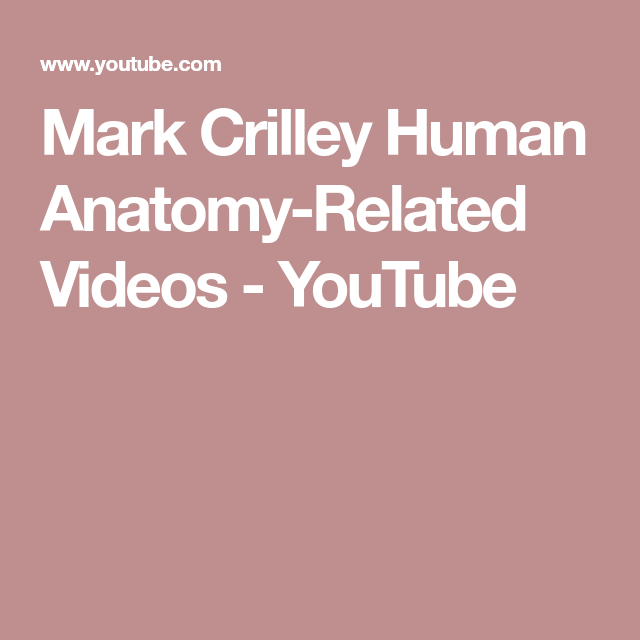 Mark Crilley Human Anatomy-Related Videos - YouTube | Downloads free ...