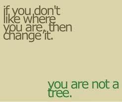 Your paleo mindset