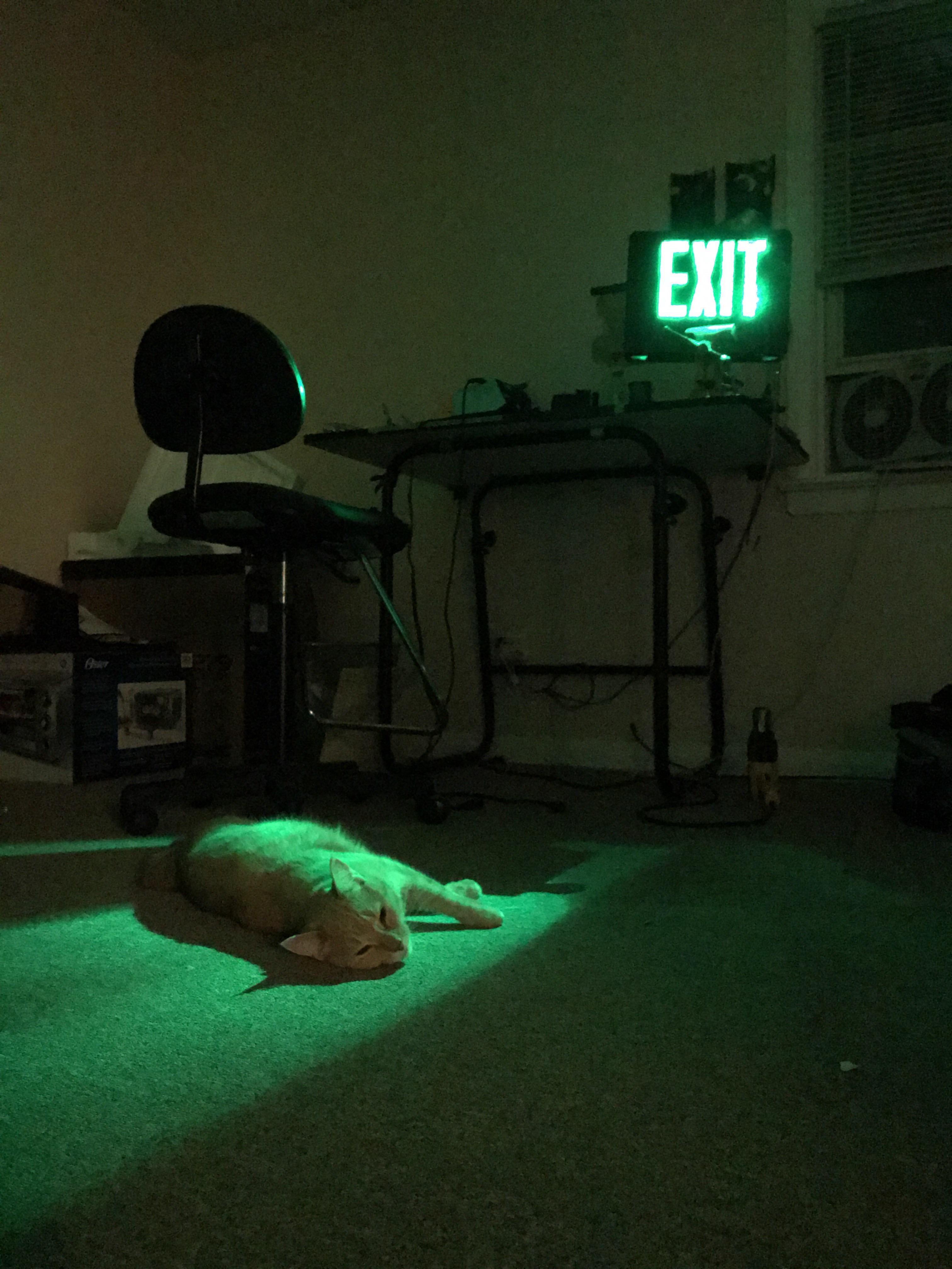 Grey Aesthetic Background Neon