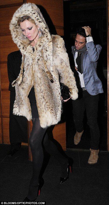 Hooded Fur, 2009