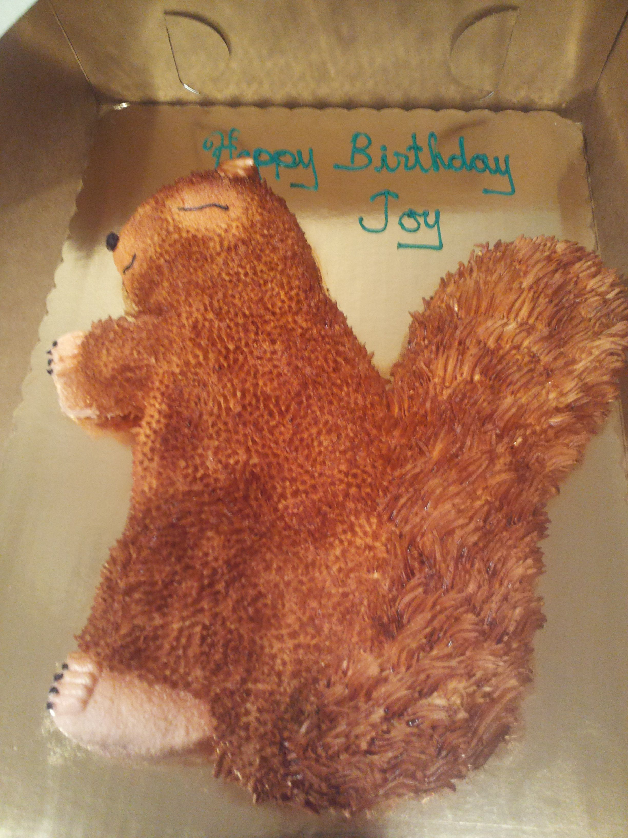 Squirrel Cake From Gallery Omaha NE