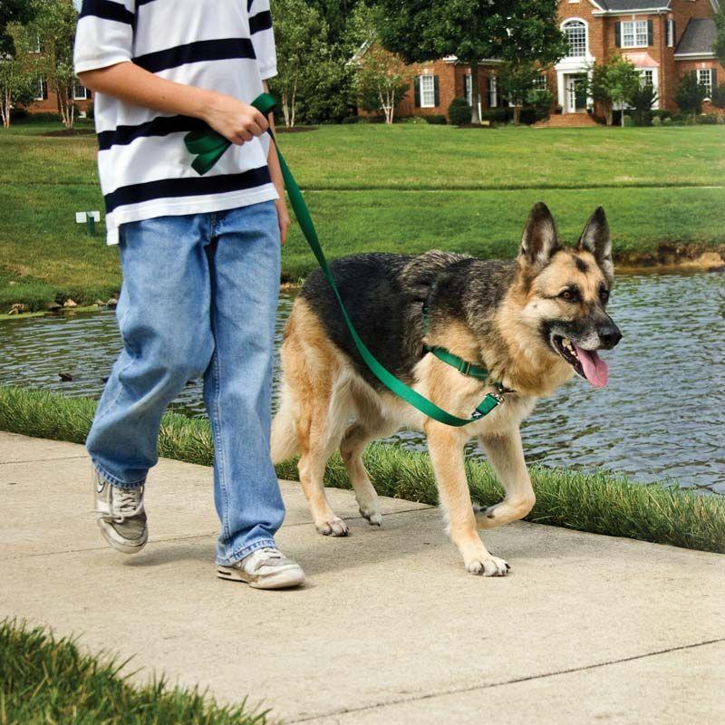 Easy Walk Harness Dog Harness Stops Dog Pulling Dog Harness