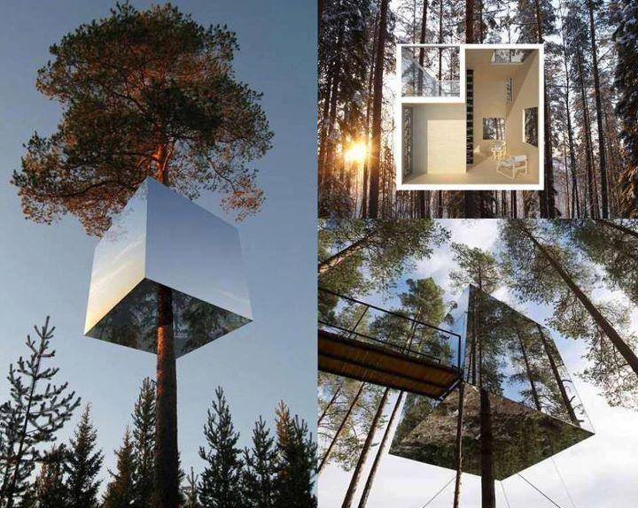 mirror cube tree house hotel
