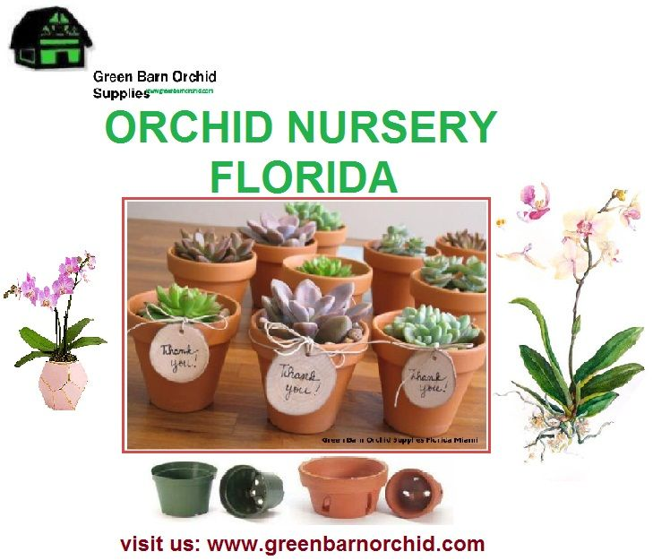 Green Barn Orchid Supplies Is One Of The Por Nursery In Florida That Includes Variety