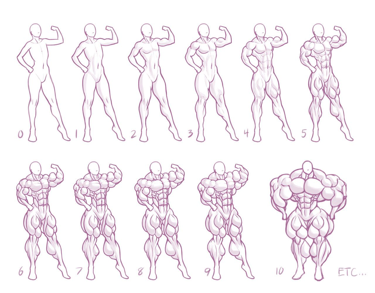 Size Chart 5 Muscle By Moxydoxy Art References Drawings Guy Drawing Sketch Book