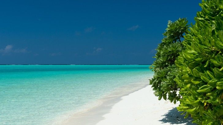 Turquoise Waters From Maldives
