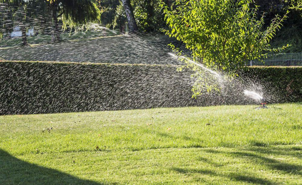 Rasenbewasserung Die Besten Tipps Und Tricks Tipps Und Tricks Bewasserung Rasen