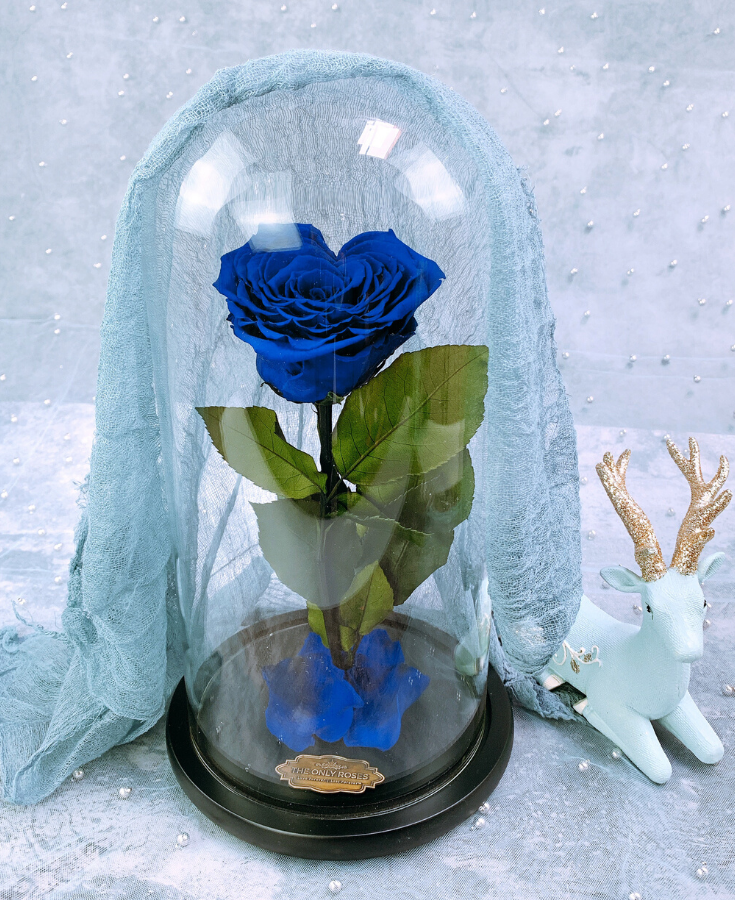 Royal Blue Heart Shape Preserved Rose Beauty And The Beast Glass