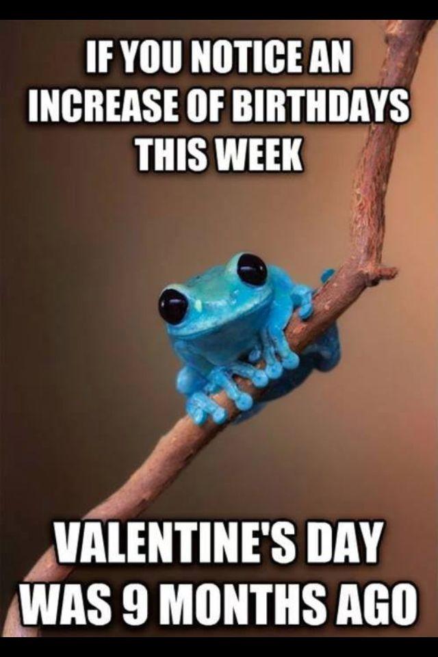 6cea69bcb3a24f4b96b6bdd3963fa6c4 cute blue frog talking about valentines day funny memes