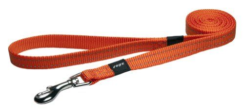 Rogz Utility Medium 58 Snake Fixed 6 Long Reflective Dog Leash Orange ** You can get more details by clicking on the image.