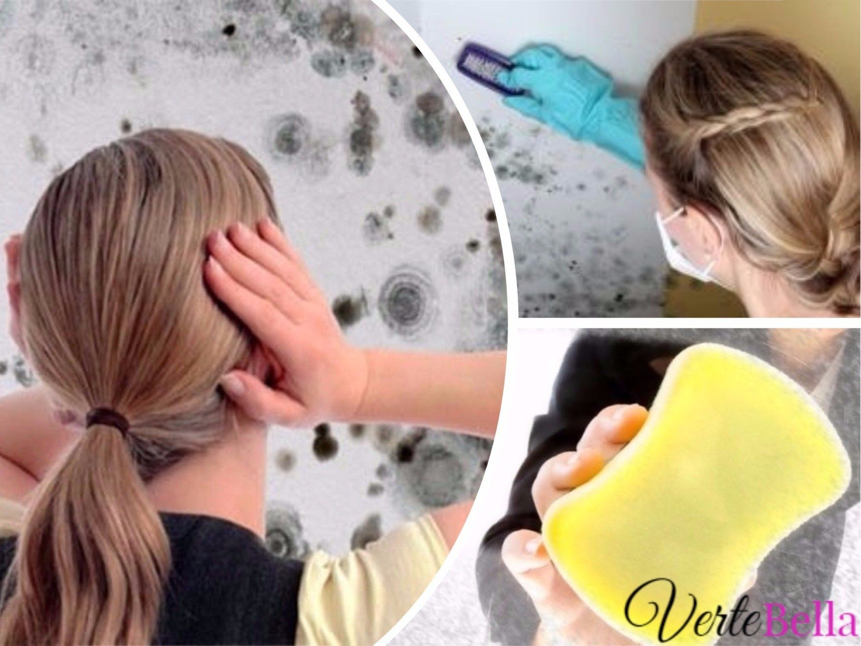 Como Acabar Con La Humedad En Las Paredes Como Eliminar La Humedad De Las Paredes En Un Solo Paso Limpieza