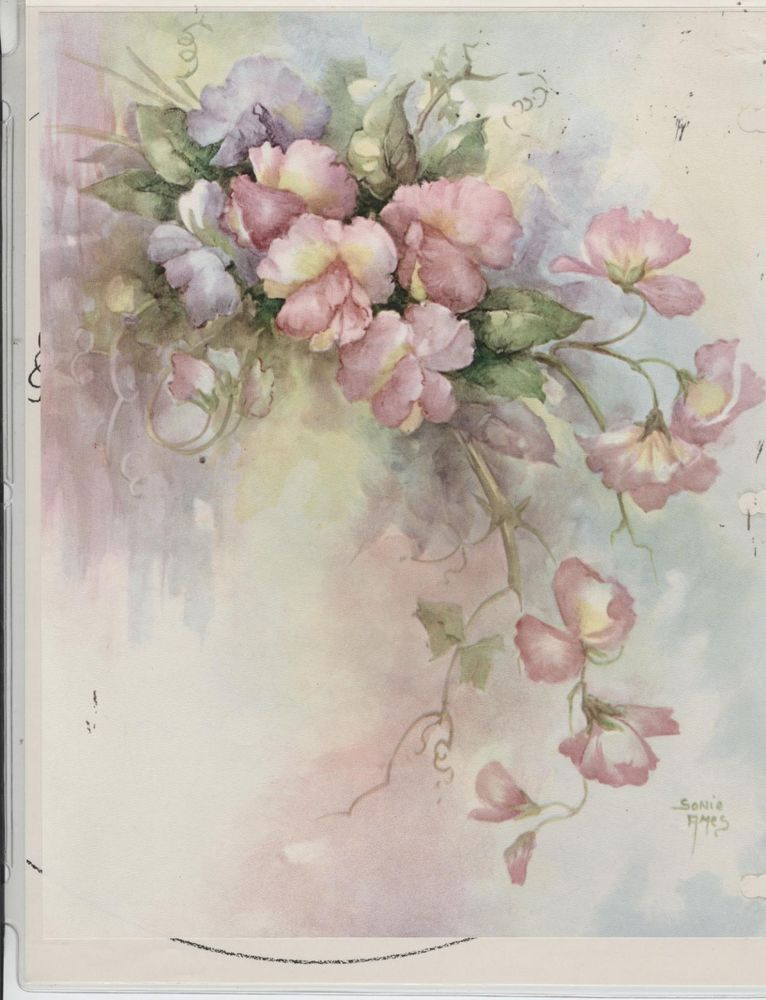 Sweet Peas #21 by Sonie Ames  China Painting Study 1974