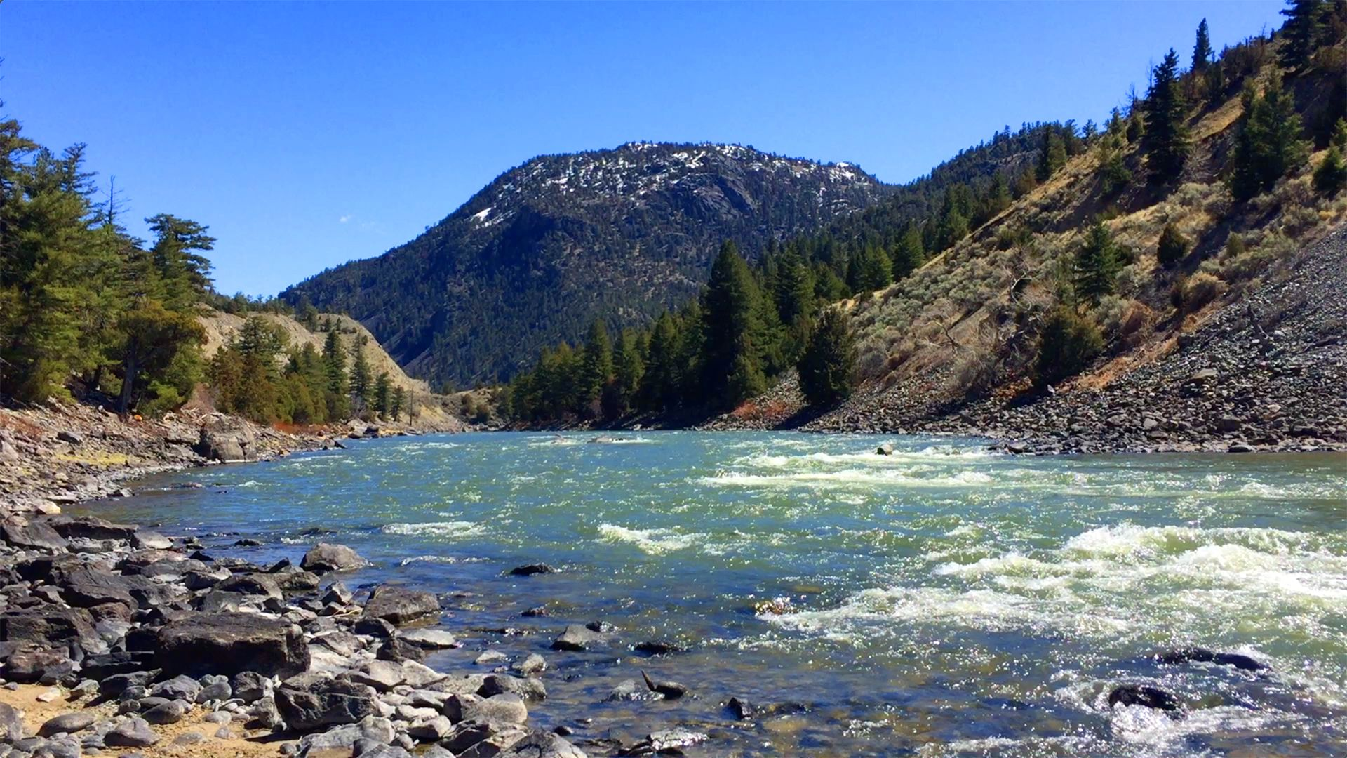 Video Fly Fishing The Yellowstone River In Yankee Jim Canyon Should Definitely Be On This Summer S To Do And See Yellowstone River Dream Water Yellowstone
