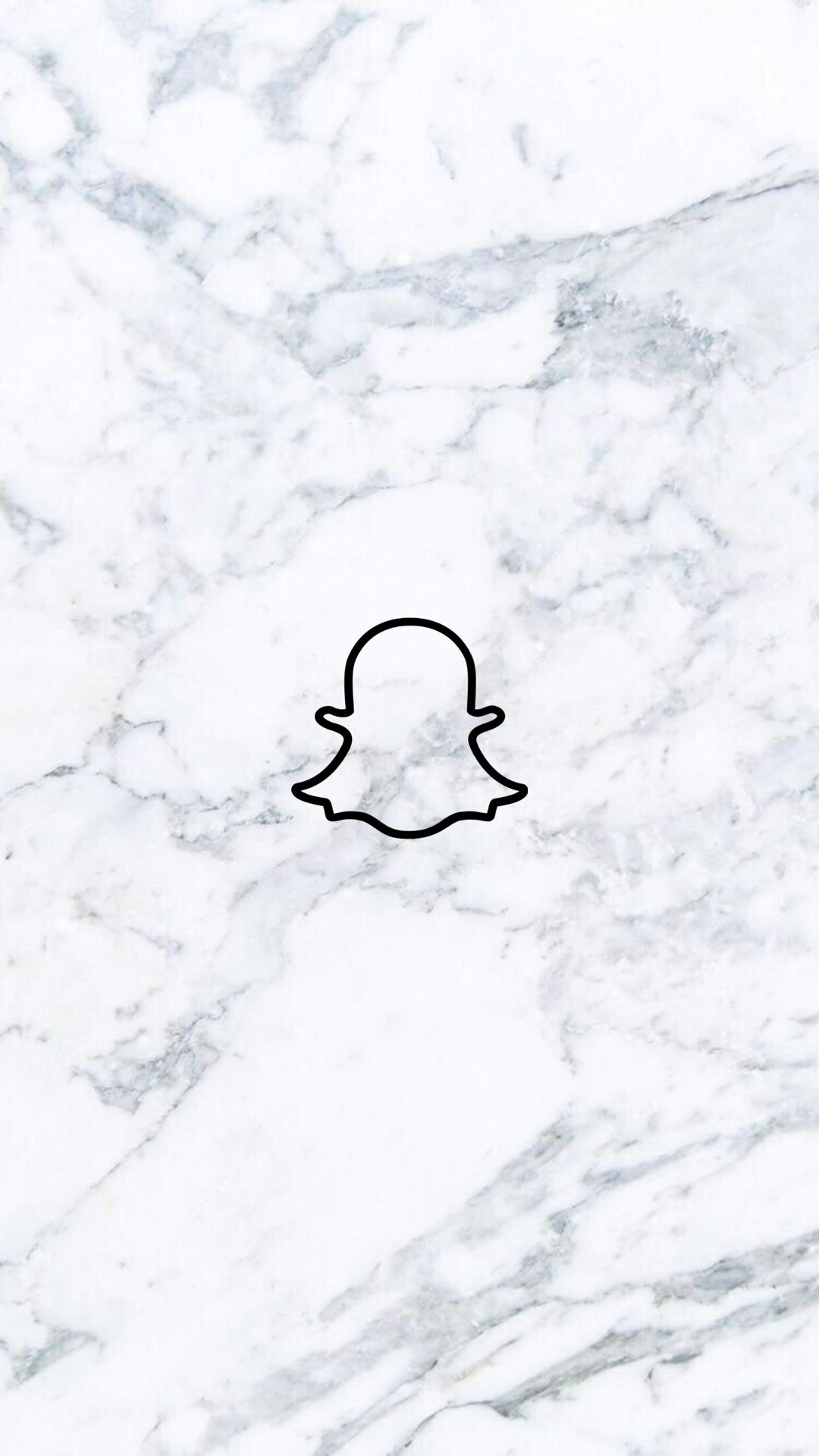 Tiktok Logo Aesthetic In 2020 Snapchat Icon Snapchat Logo Instagram Logo